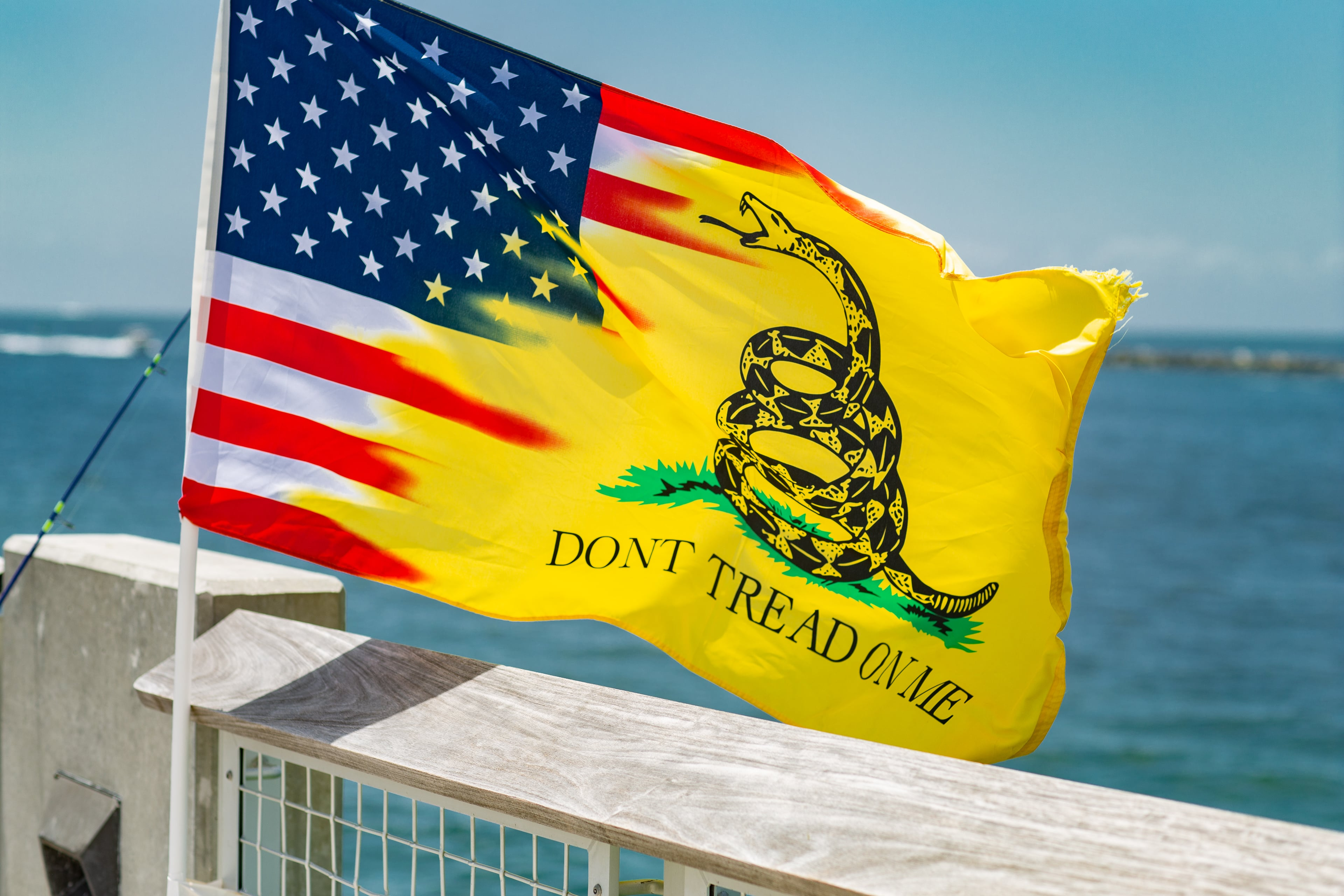 The Gadsden Flag is pretty cool.